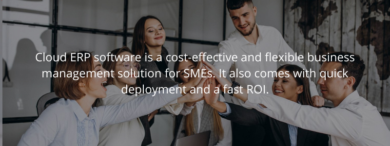 cloud erp for smes in uae